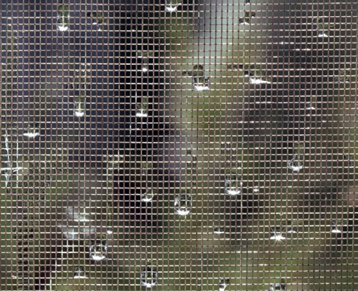 """Raindrops in a Window Screen"" (2010), dalla serie 'Visible Light' (courtesy: Alexander Harding)"