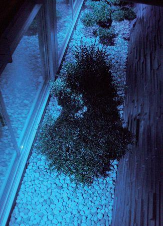 Ancora un'immagine della SPA. Dettaglio con l'illuminazione RGB della grande vetrata (cortesia: A&EFFE Studio Architettura