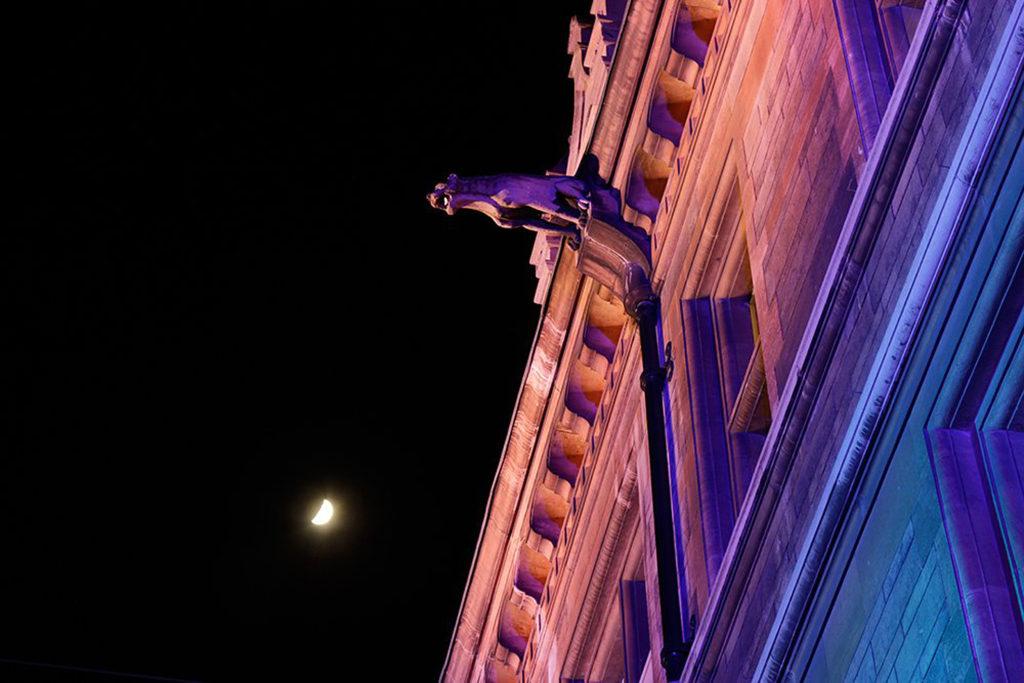 Cambridge, Gonville and Caius College. Particolare di uno dei doccioni intagliati nella pietra sulla facciata in stile gotico di età vittoriana su Trinity Street (courtesy photo: Malgosia Benham)