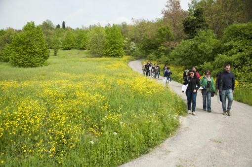 Tutti insieme nel parco per esercitarsi sulla percezione (foto: Mattia Scarfò)