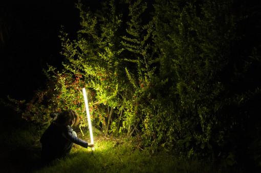 Elemento flessibile a luce bianca (foto: Mattia Scarfò)