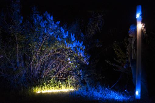 Luce bianca e colorata (foto: Mattia Scarfò)