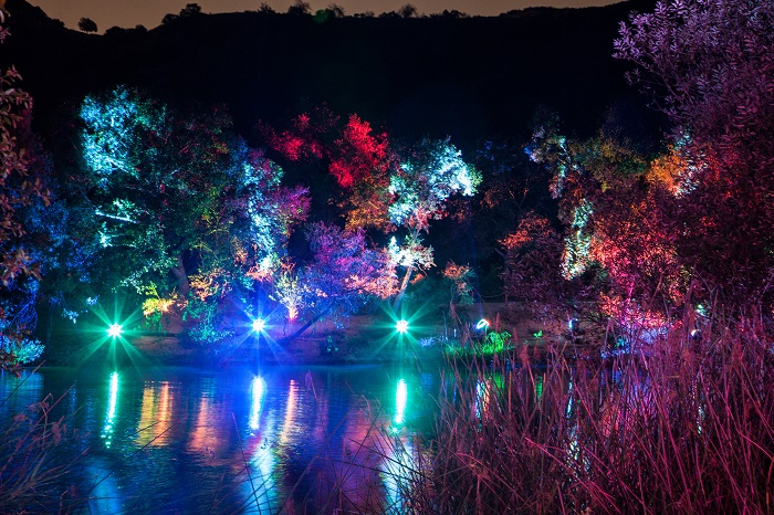 Los Angeles, Descanso Gardens. Lightwave Lake (courtesy photo: Jake Fabricius)